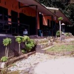 sembalun-green-forest-homestay