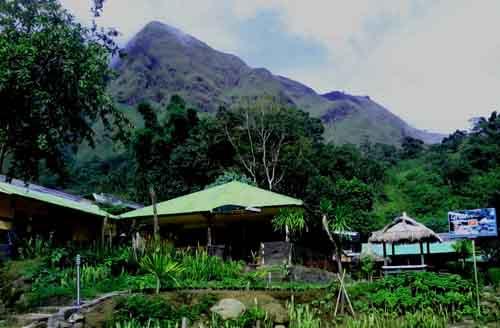 sembalun-green-forest-homestay0