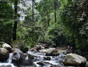 senaru-panorama-trekking