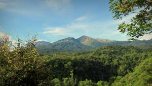 senaru-panorama-trekking2